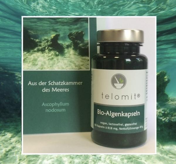 telomit® Bio-Algenkapseln - 1 Packung = 60 Kapseln